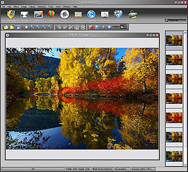 virtual_photograph